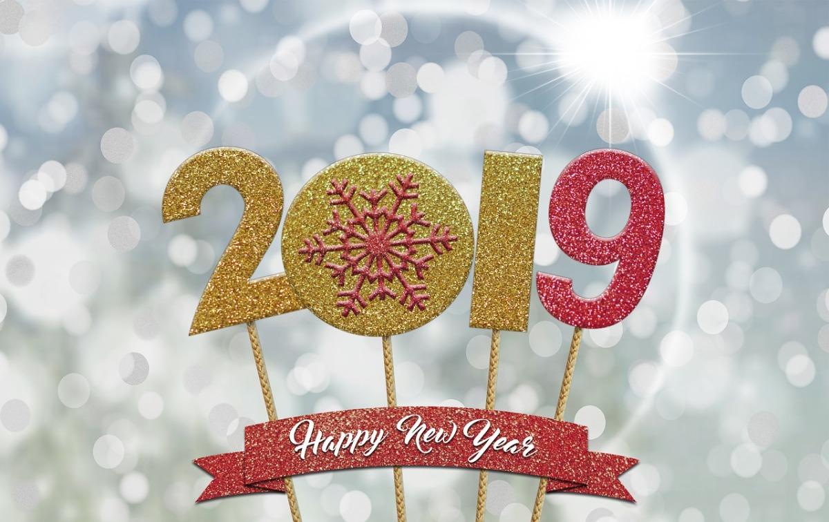 Bilan 2018 : Au revoir 2018, bonjour 2019! (Ou l'art de tourner lapage)